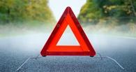 Соцсети: в Омске водитель маршрутки слетел в кювет из-за приступа эпилепсии