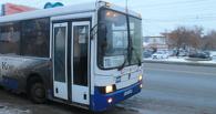 Без паники: сегодня омичи смогут уехать на автобусах после 19:00