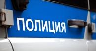 На омской трассе насмерть сбили мужчину, шедшего по дороге