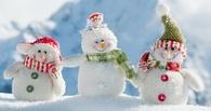 В Омске устроят конкурс на лучшего снеговика
