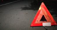 В Омской области 22-летний водитель «Мерседеса» насмерть сбил двух пешеходов