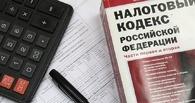 Омские начинающие бизнесмены смогут воспользоваться нулевой налоговой ставкой