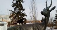 Кота-блогера из Нижнего Тагила не пустили в омское котокафе