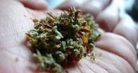 Омич съел пакет с наркотиками на глазах у полиции