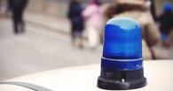 В Омской области водитель иномарки сбил подростка