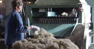 Дело о банкротстве омского «ЛенОма» отложили до февраля