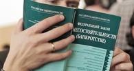 Омская область занимает 8-е место в России по количеству банкротов