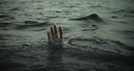 В Омской области во время празднования Дня России утонули сразу три человека