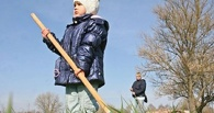 В Омске на субботнике снесут 119 деревьев