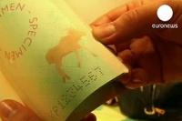 «Бегущий» лось защитит финский паспорт от подделок