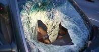 По пути из Омска Ford лоб в лоб влетел в ВАЗ: двое погибли