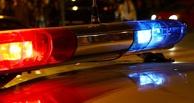 СКР начал проверку стрельбы полицейских на трассе под Омском, где погиб водитель с годовалым мальчиком