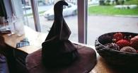 В Омске закрывается кофейня «Дырявый котел»