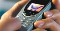 В Омске мужчина украл мобильный у 10-летней девочки