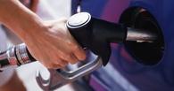 В Омске дорожают все виды топлива, кроме АИ-80 и АИ-92