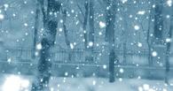 Синоптики прогнозируют в Омске метель и перепады температур