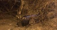На Красном Пути в Омске иномарка съехала в кювет и врезалась в дерево