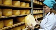 Омская область вошла в топ-5 России по объемам производства сыра