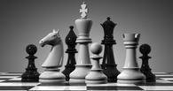 Омский шахматист на чемпионате мира разделил 19-29 места