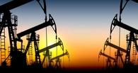 Путин прогнозирует, что в 2017 году цены на нефть стабилизируются