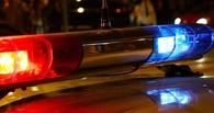 В Омске под колесами иномарки погибла женщина